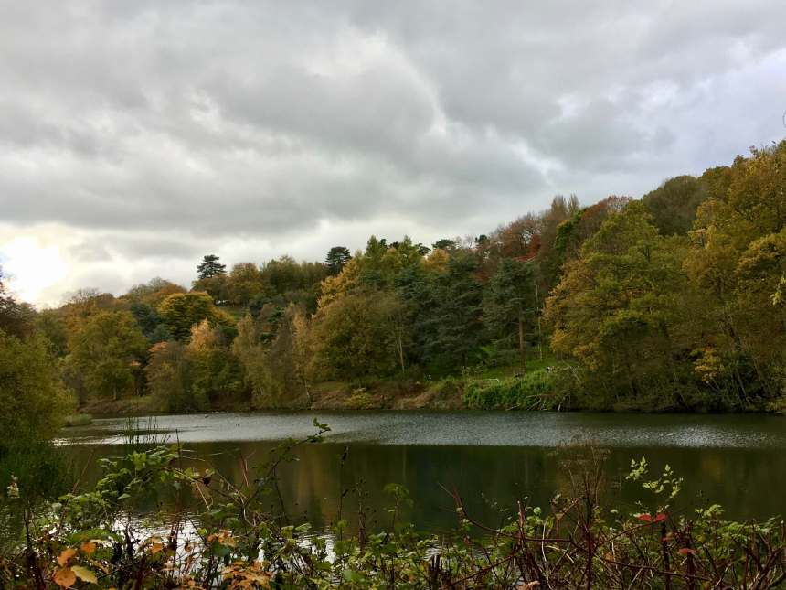 Winkworth_Arboretum_by_Law
